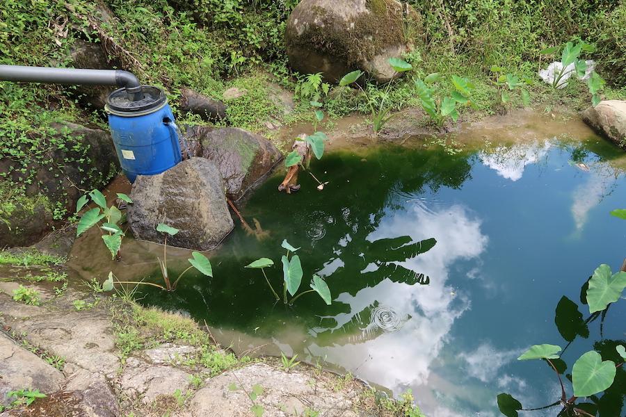 活水するための道具