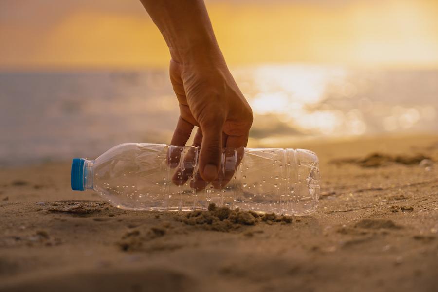 海岸でペットボトルを拾う掃除