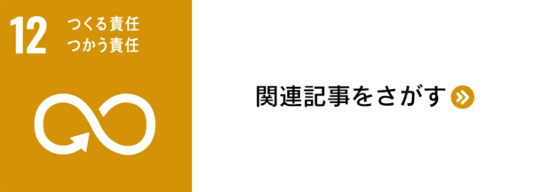 sdg_banner_12