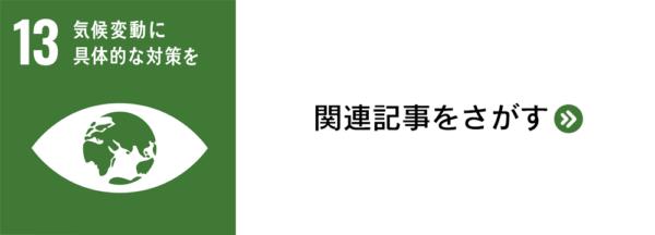 sdg_banner_13