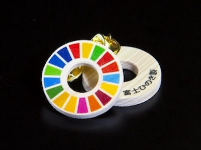 fuji-SDGs-pin