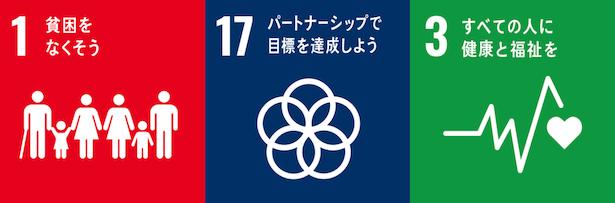 SDGs推進副本部長(外務大臣)賞