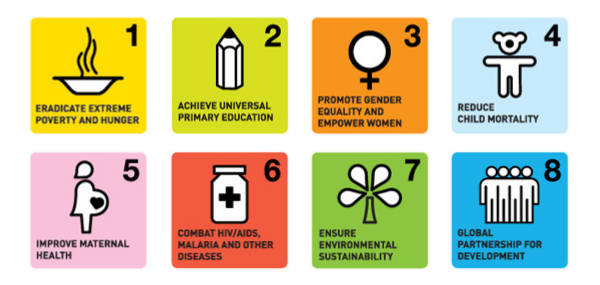 MDGs-icon