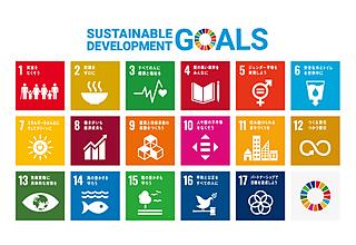 SDGs(持続可能な開発目標)17目標と169ターゲットの詳細解説のイメージ