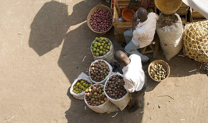 起業家の国ウガンダの持続可能なビジネスを支えるユヌス・ソーシャル・ビジネス(YSB)とは?の画像