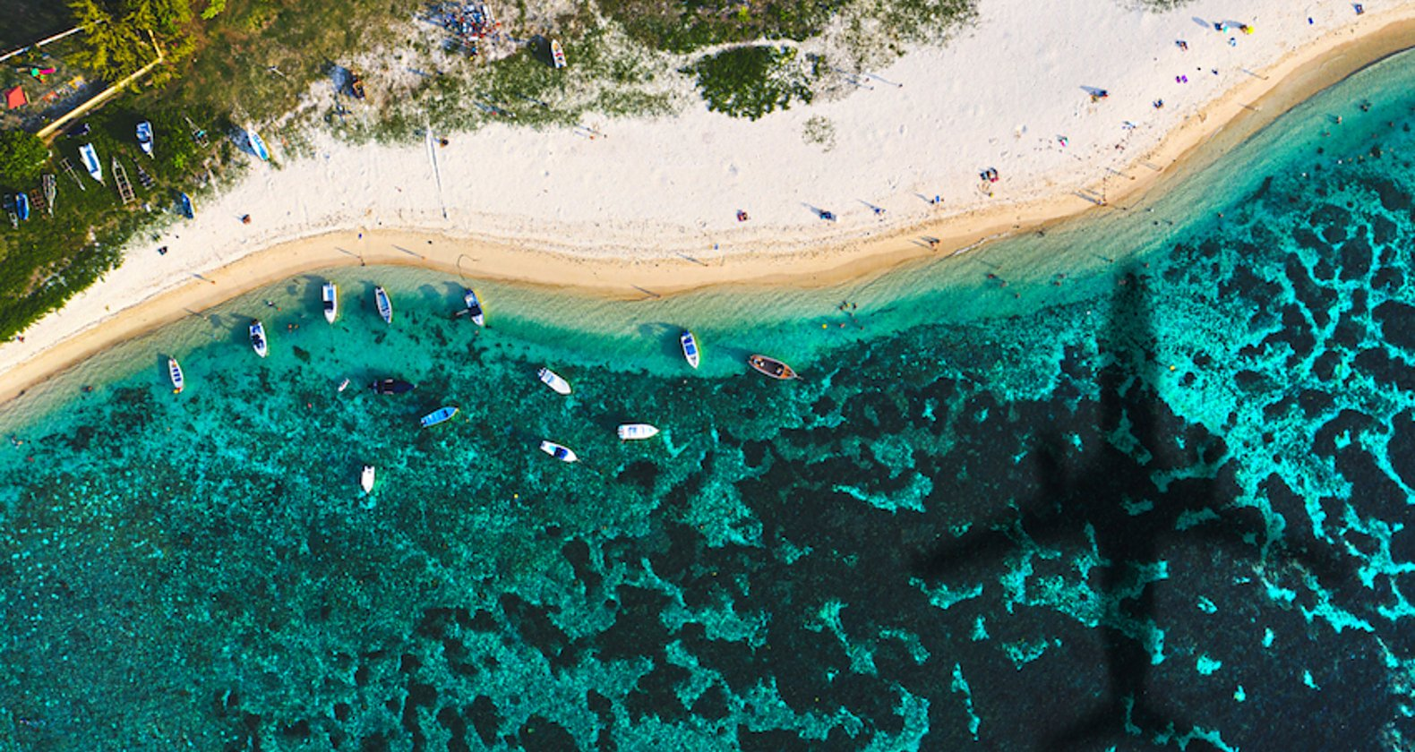 モーリシャス座礁事故の影響をSDGsから解説 注目される理由は?の画像