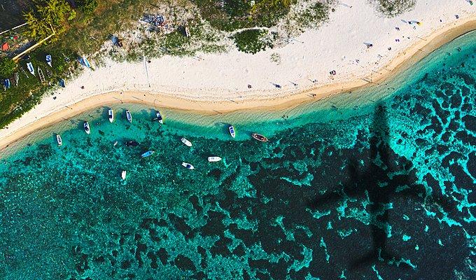モーリシャス座礁事故の影響をSDGsから解説|注目される理由は?の画像